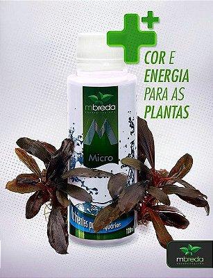 Fertilizante Líquido Micronutri MBREDA
