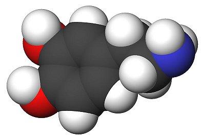 [62-31-7]Dopamine hydrochloride5GR
