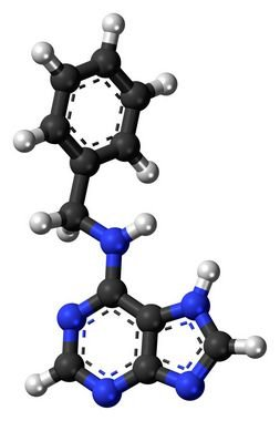 [1214-39-7]6-Benzylaminopurine5GR