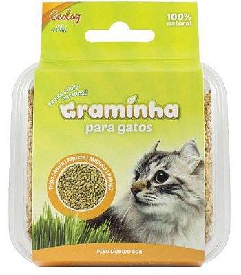 Graminha para Gatos - 100% Natural - Ecolog
