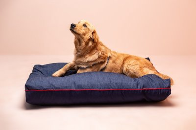 Almofada para Cachorro Mabuu Pet - Jeans