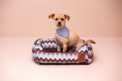 Cama para Cachorro Mabuu Pet - Chevron Azul