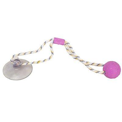 Brinquedo Push Ball Pet - Rosa