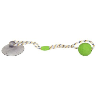 Brinquedo Push Ball Pet - Verde