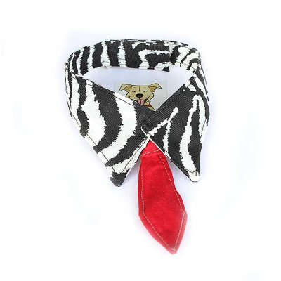 Gola Gravata Zebra