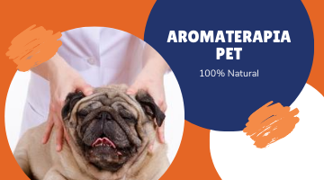 Aromaterapia Pet