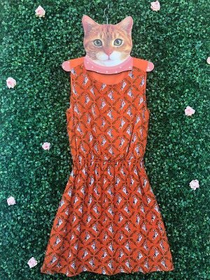 Vestido Guaxinim