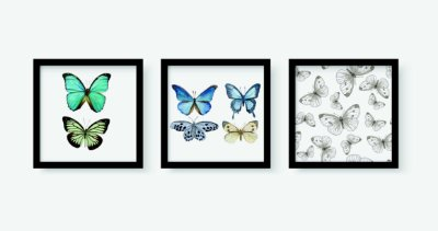 Kit 3 Quadros Juvenil Butterflies