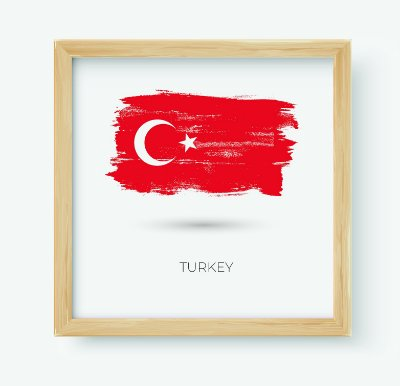 Quadro Decorativo Juvenil País Turkey