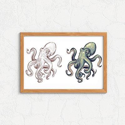 Quadro Decorativo Animais- Polvo
