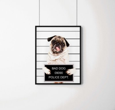 "Quadro Decorativo Animais- ""Bad Dog"" Prison Pug."