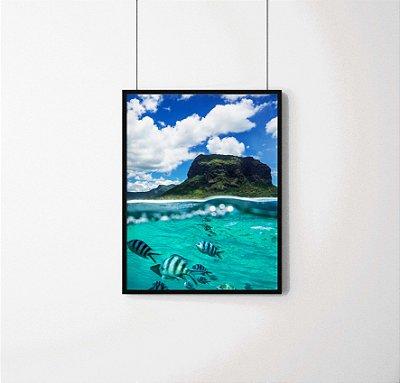Quadro Decorativo Animais-Fishes under the sea.
