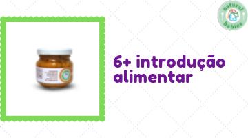 6+ - introdução alimentar