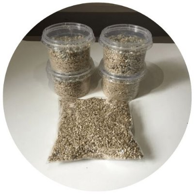 Cultivo Simples de Psilocybe Cubensis - Kit Completo