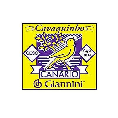 Encordoamento Cavaquinho GESC canario Giannini