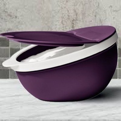 SALEIRO 300GR ROXO DEWBERRY - TUPPERWARE
