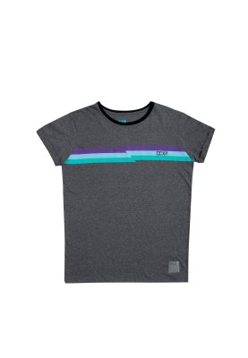 Camiseta Color Stripes Cinza