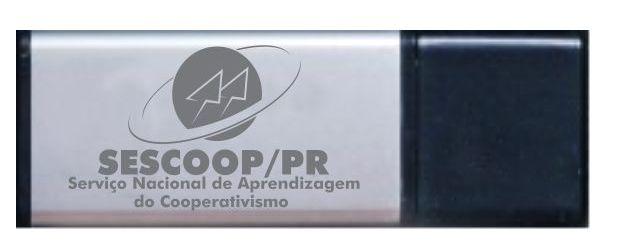 Pen Drive - IF 297 K
