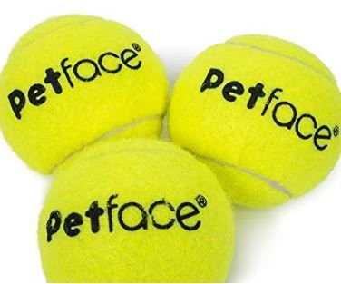 Pct c/ 3 Bolas de Tênis 6cm para Cães - Cod. 30238