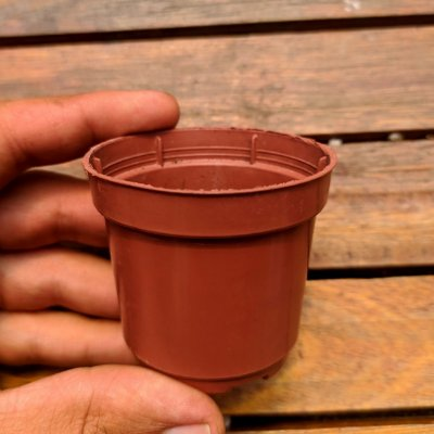 Vaso plástico (6cm de diâmetro - usados em perfeito estado)