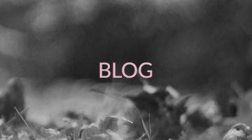 Banner Blog