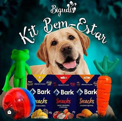 Kit Bigudis Bem-Estar