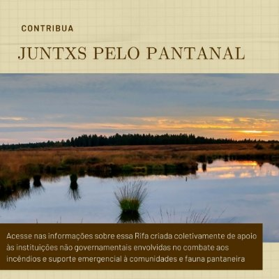 Juntxs pelo Pantanal - Rifa Coletiva - Sócio Ambiental