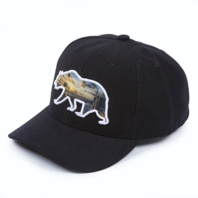 Boné Aversion Snapback Aba Curva Preto - Model Bear