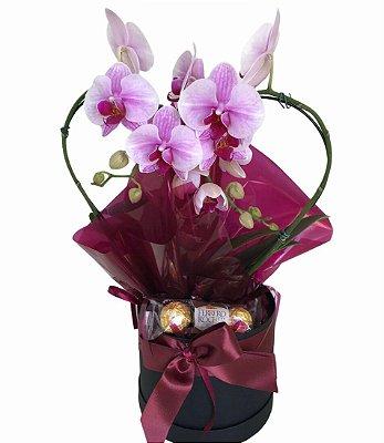 Orquídea Box Coração