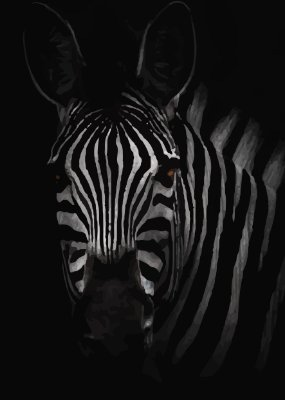 Placa Decorativa - Zebra 30X42cm
