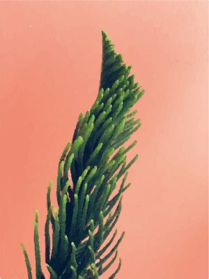 Placa Decorativa - Planta Palmeira  - 30X42cm