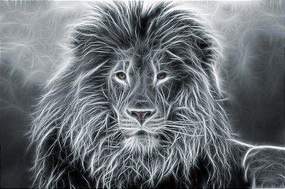 Quadro Leão - Energia Preta e Branca