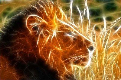Quadro Leão - Energia 5