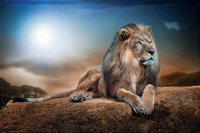 Quadro Leão de Judá - Horizonte