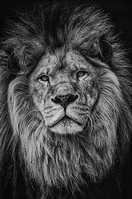 Quadro Leão de Judá - Preto e Branco 3