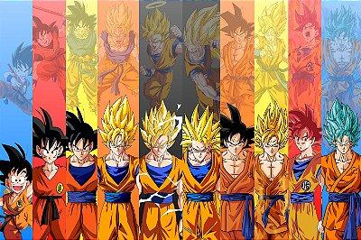 Quadro Dragon Ball - Goku Transformações 2