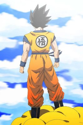 Quadro Dragon Ball - Goku Nuvem