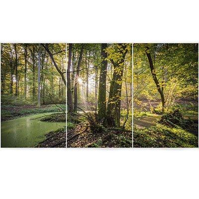 Floresta Natural