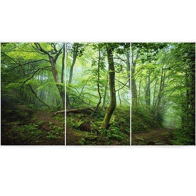 3 Quadros Decorativos Divididos - Floresta Verde