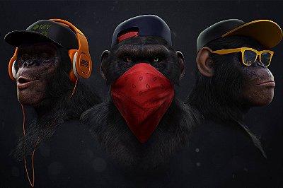 Quadro Moderno - Gangue dos Macacos