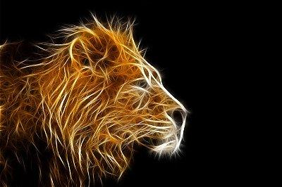 Quadro Leão - Energia