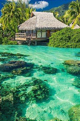 Quadro Praia - Paraíso Internacional
