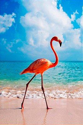 Quadro Praia - Flamingo