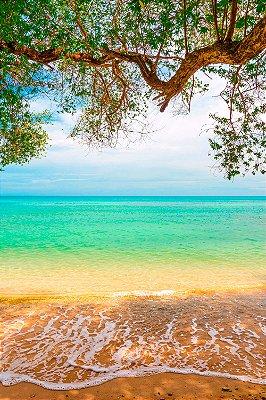 Quadro Praia - Harmônica