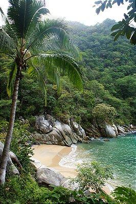 Quadro Praia - Paraíso
