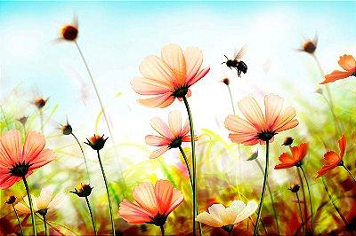 Quadro Flores - Jardim