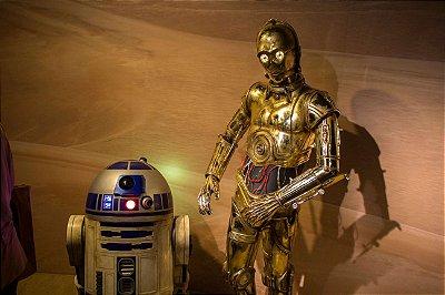 Quadro Star Wars - Droids
