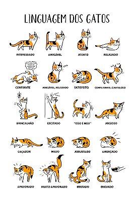 Quadro com Frase - Linguagem dos Gatos