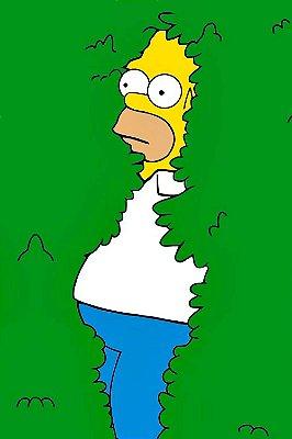 Quadro Simpsons - Arbusto