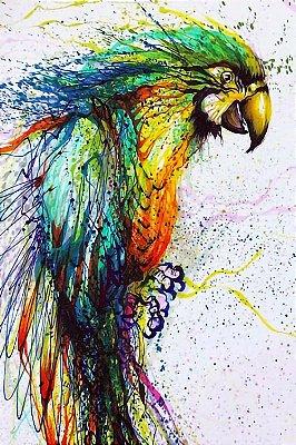 Quadro Animais - Papagaio em Pintura